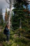 The Adventure - Mt Rainier