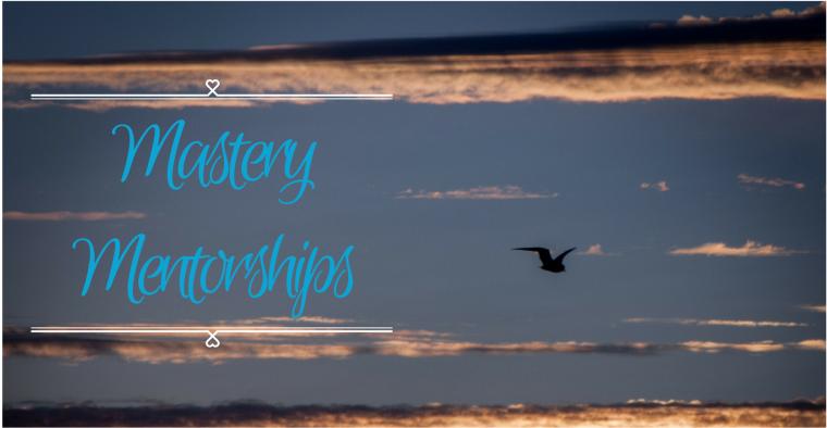 Mastery Mentorships